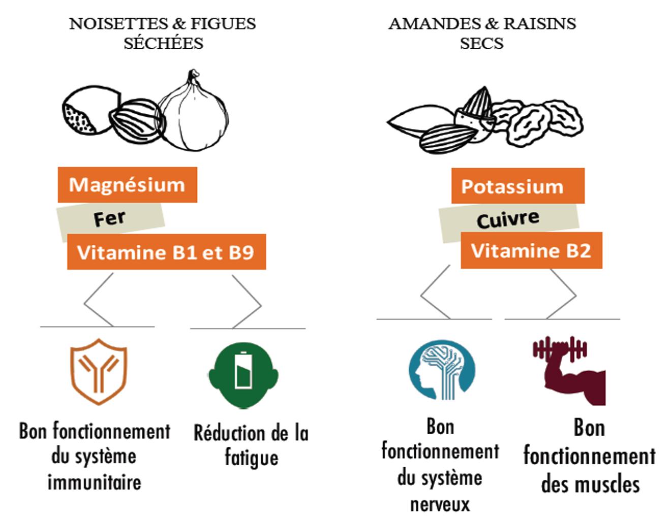 infographie sun encas bio apports vitamines et minéraux